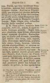 1536d nicolaus-olahus-5