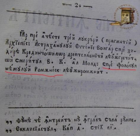 1831 funie-sau-franghie-intreita